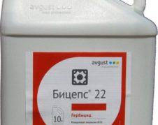 бицепс 22